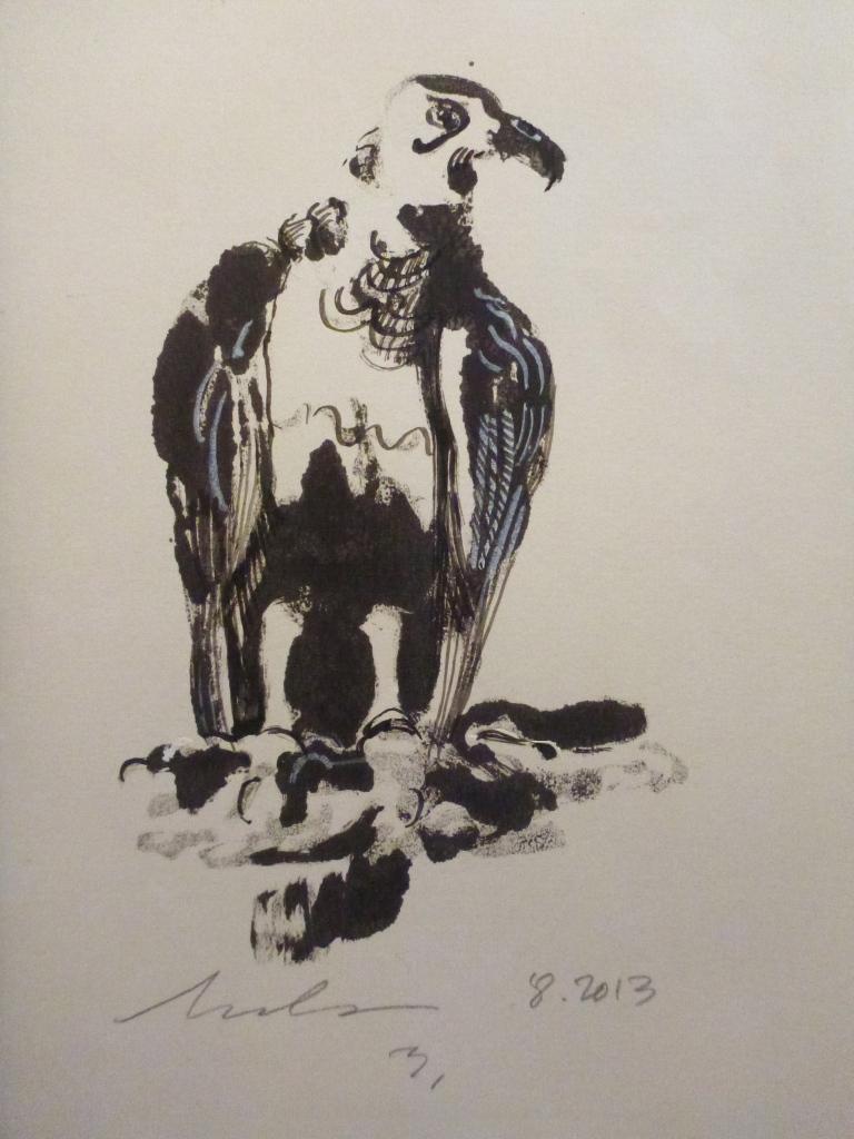 black vulture.3