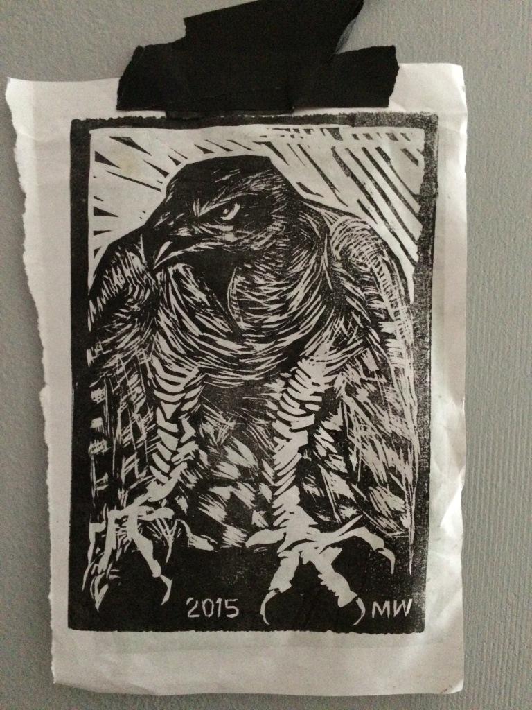 hawk print-test